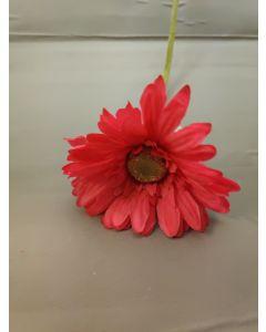 Snijbloem Gerbera kleur Roze