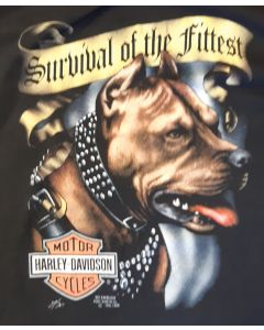 """Harley Davidson """"Survival of the Fittest"""""""
