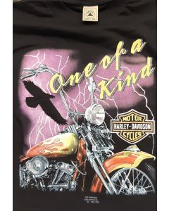 """Harley Davidson """"One of a Kind"""""""