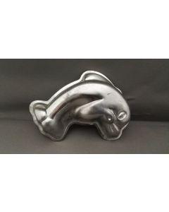 Bakblik dolfijn, klein