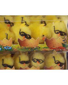 Kuikentjes met bril in eierschaal