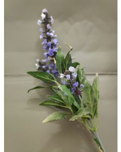bosje Lavendel